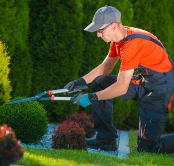 Trained Landscapers